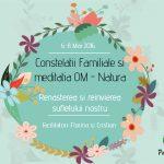 Constelatii familiale