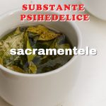 subspsihedelice-sacr