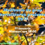 med-materializare-2017