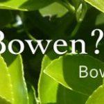 Bowen-Now-Bowen-Therapy_52448_image
